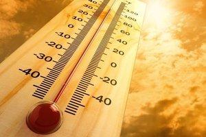 Аномальная жара на Закарпатье: спасатели объявили высокий уровень пожарной опасности