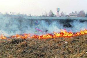 ГосЧС предупредила о чрезвычайном уровне пожарной опасности на выходных