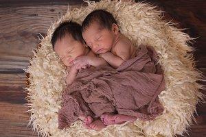 Одинаковые только на первый взгляд: в Киеве установили рекорд среди близнецов