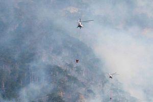 У заповіднику окупованого Криму розгорілася масштабна пожежа