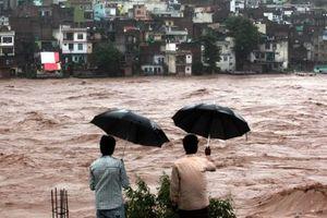 Сезон дождей в Индии: погибли уже более 770 человек