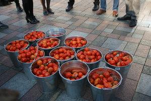 Украина теряет экспорт помидоров