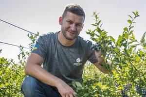 """""""В выращивании ягод экстрима не меньше, чем в гонках"""": истории успеха украинских фермеров"""