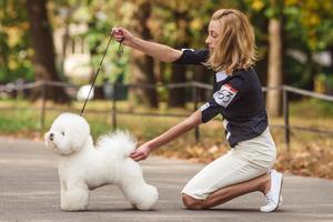 """Как содержат породистых псов в Украине: откровения собачьих """"мам"""""""