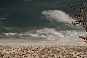 Сахара хэнд мэйд: что может превратить Украину в пустыню