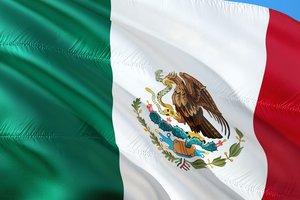 В Мексике со стрельбой похитили депутата федерального собрания