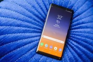 Эксперты определили смартфон с лучшим экраном в мире