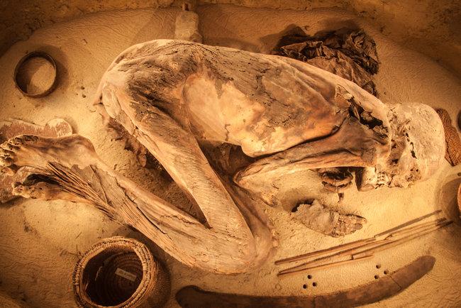 Мумифицирование проводили еще 5  споловиной тыс.  лет назад