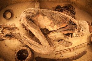 Раскрыта невероятная тайна египетской мумии