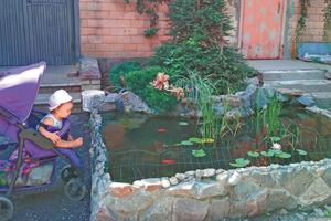 В Харькове во дворе многоэтажки появился пруд с золотыми рыбками и лилии