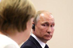 Визит Путина к Меркель: немецкий журналист объяснил причину