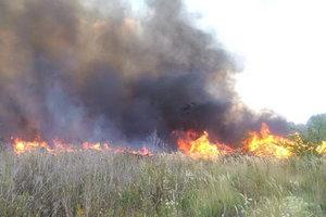 В Харьковской области во время выжигания сухостоя погибла женщина