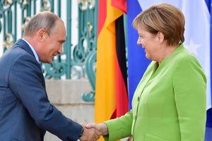 Путин и Меркель пожали руки: как началась встреча глав России и Германии