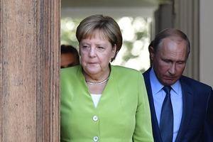 Меркель и Путин. Фото: AFP