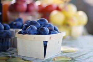 Что приготовить из слив: ТОП-5 летних рецептов