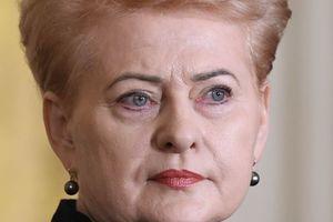 Литва остается верным другом Украины – Грибаускайте поздравила украинцев с Днем Независимости