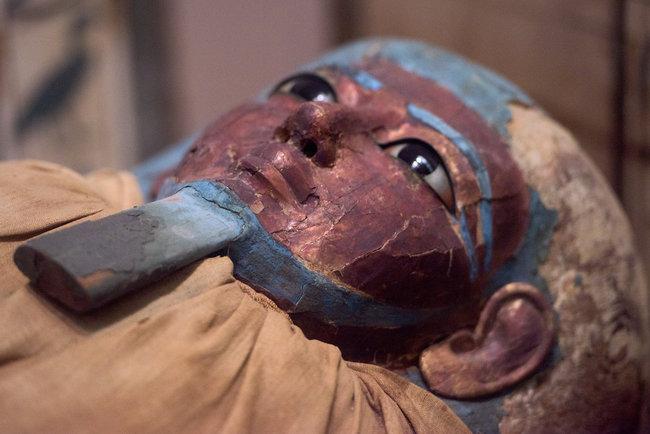 Студентка разгадала тайну древнеегипетской мумии