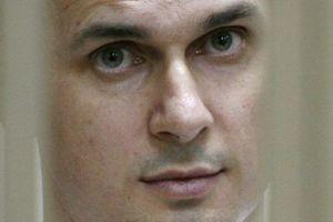 В Италии российский режиссер выступил в поддержку Сенцова