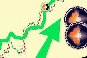 За сутки цена криптовалюты BitcoinDark выросла на 400 процентов