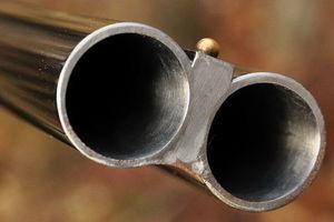 В Черниговской области мужчина на охоте застрелил родного брата