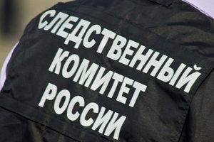 Следком РФ объявил в розыск украинца, мешавшего голосовать россиянам в Киеве