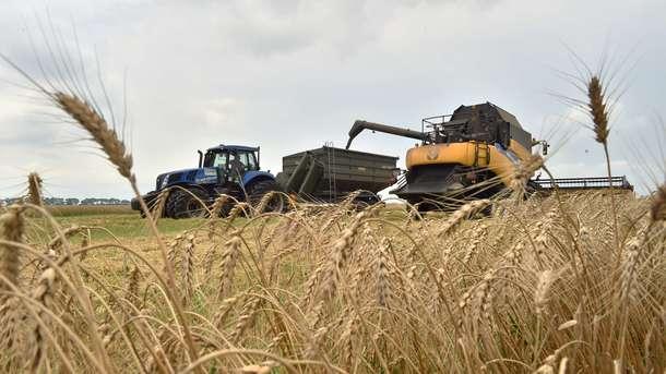 Саудовская компания решила приобрести украинский агрохолдинг