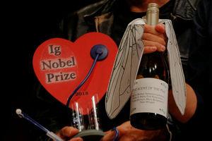 Ученому вручили премию за определение мухи в бокале вина по запаху