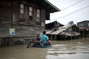 Разрушенные дома, затопленные поля и улицы: тайфун