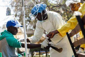 В Зимбабве 28 человек погибли от холеры