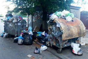 """Экономия на вывозе отходов и """"мигрирующий мусор"""": почему Киев утопает в грязи"""
