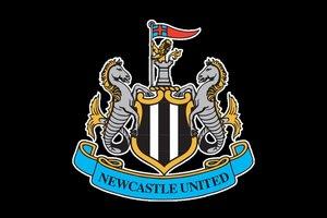"""Английские футбольные клубы """"Ньюкасл Юнайтед"""" и """"Кардифф Сити"""" выйдут на ICO"""