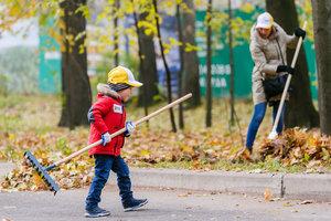 КГГА предупреждает: сжигающих листья граждан ждут большие штрафы