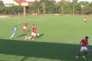 Собака нанесла травму футболисту во время матча