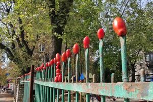 """На Берестейской в Киеве забор """"украсили"""" помидорами"""