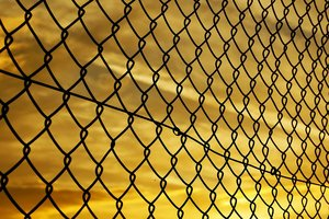 Финны протянут забор на границе с Россией: хотят отгородиться от заразы