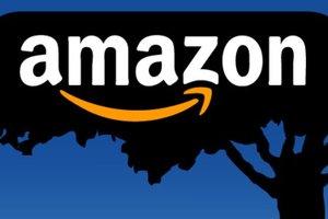Amazon може опинитися в Україні. Фото: flickr.com