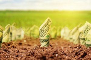 """""""Вопрос рынка земли – это вопрос безопасности государства"""", - эксперты"""