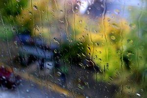 Похолодание и дожди: прогноз погоды в Украине на неделю