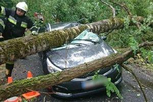 В Польше бушевал ураган