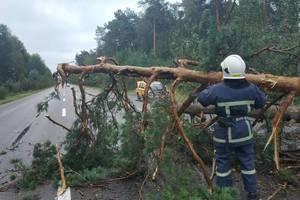 В Украине разбушевалась непогода: более двухсот населенных пунктов остались без света