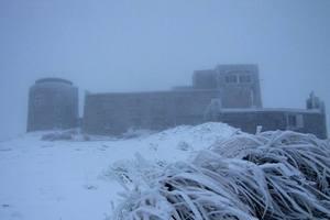 В Украине выпал первый снег: опубликованы фото