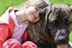 Уляна Супрун дозволила заводити собак. Фото: pixabay
