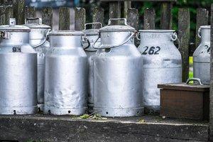 Чверть молока в Україні виробляється приватними домогосподарствами. Фото: Pixabay