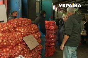 Лук в Украине бьет рекорды дороговизны: почему выросли цены