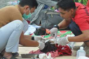 Число жертв цунами в Индонезии резко возросло