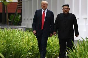 Мы влюбились: Трамп рассказал об отношениях с Ким Чен Ыном