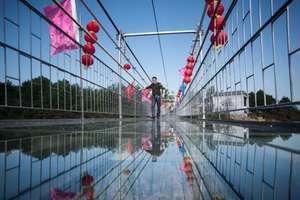 В Китае опять построили прозрачный мост над пропастью