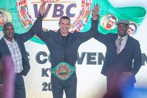 Владимир Кличко стал почетным чемпионом WBC