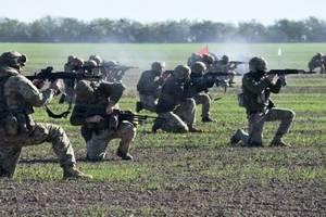 Польша и Украина выходят на новый уровень военного сотрудничества: Порошенко подписал закон
