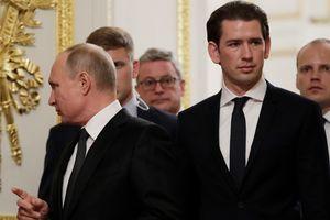 Канцлер Австрии поддержал строительство газопровода в обход Украины
